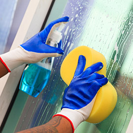 Window Cleaning Gloves