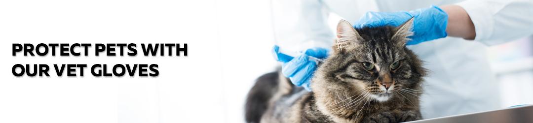 doctor glove examine