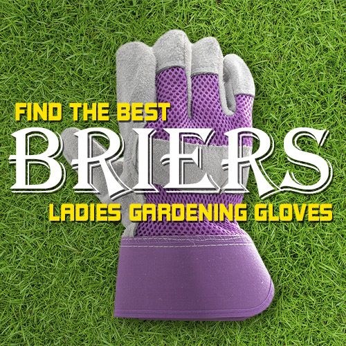 Find the Best Briers Ladies Gardening Gloves