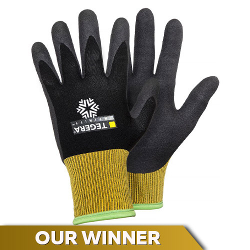 Ejendals Tegera Infinity 8810 Cold Insulation Gloves