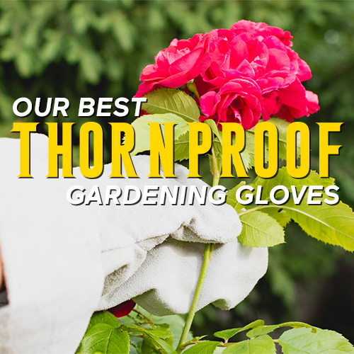Our Best Thorn Proof Gardening Gloves