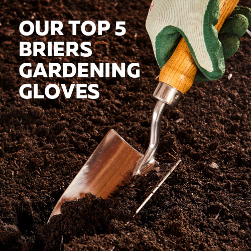 Visit the Safety Gloves Top 5 Selection of Briers Gloves