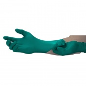 Biodegradable Disposable Gloves