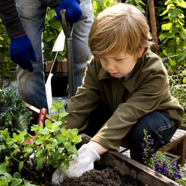 Click Here for Children's Gardening Gloves