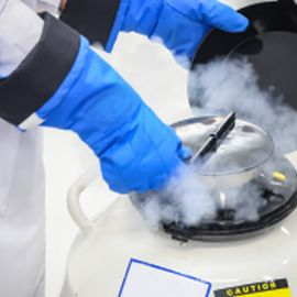 Liquid Nitrogen Gloves