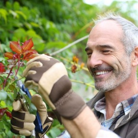 Click Here for Men's Gardening Gloves