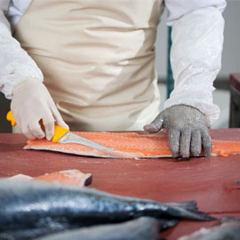 Fish Filleting Gloves