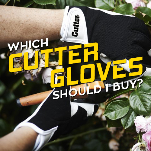 Our Best Cutter Gloves