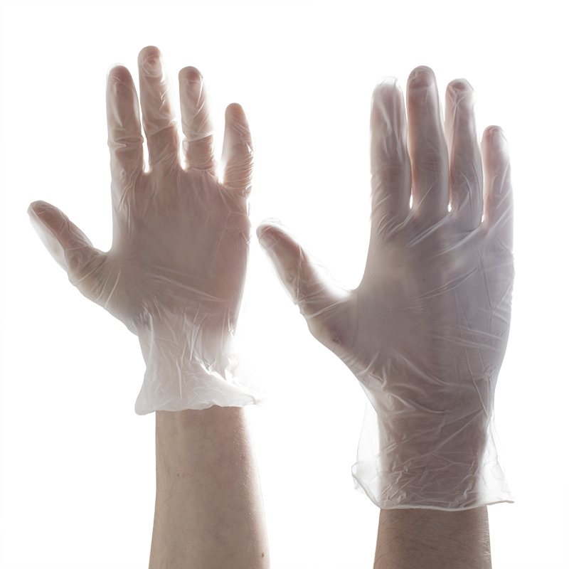 Aurelia Delight PF Medical Grade Vinyl Gloves